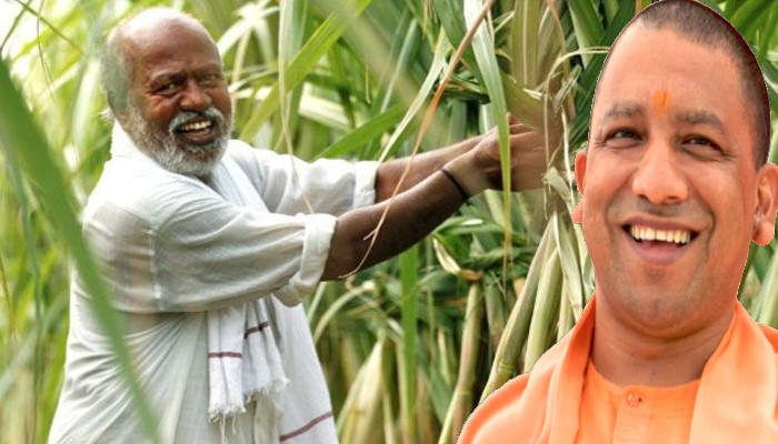 Yogi government paid 6000 crores to sugarcane farmers in 45 days